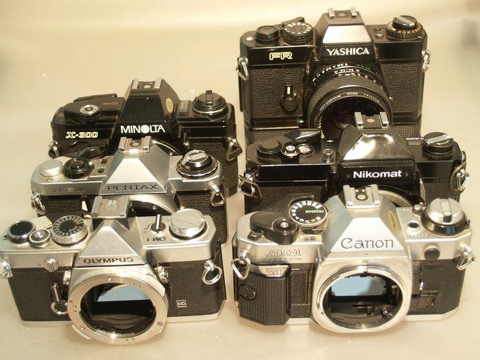 asorted SLR cameras